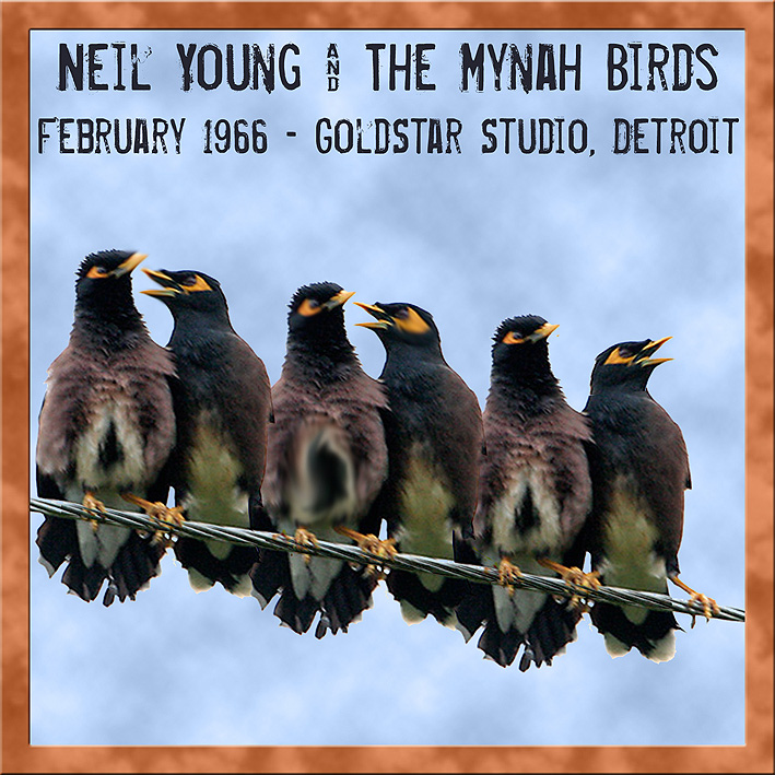 http://wulfware.de/covers/Index3/NY_mynah6602_Front150.jpg